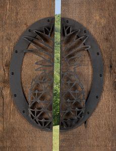 Pineapple Door Pull Open